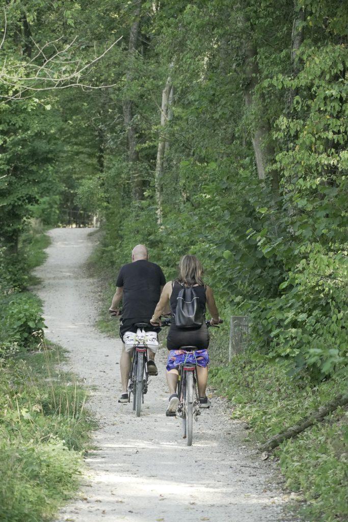 מסלולים לטיולי אופניים עם כל המשפחה.